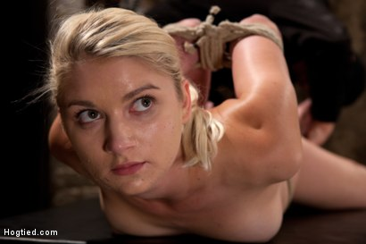 Photo number 3 from Sexy Blond with amazing hard fit body, suffers Category 5 Suspension<br>First hardcore bondage shoot shot for Hogtied on Kink.com. Featuring Natasha Lyn in hardcore BDSM & Fetish porn.