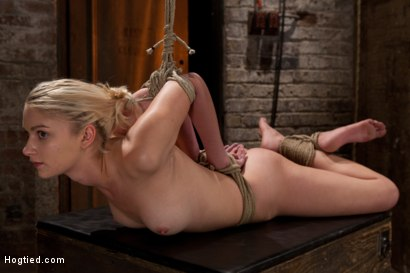 Photo number 6 from Sexy Blond with amazing hard fit body, suffers Category 5 Suspension<br>First hardcore bondage shoot shot for Hogtied on Kink.com. Featuring Natasha Lyn in hardcore BDSM & Fetish porn.