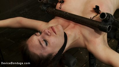 Photo number 11 from Curvaceous Red Head shot for Device Bondage on Kink.com. Featuring Iona Grace and Isis Love in hardcore BDSM & Fetish porn.