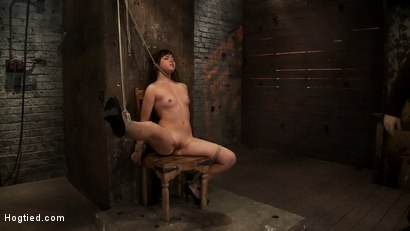 Photo number 12 from 18yr old is bound to the chair<br>Neck rope limits her breathing, this makes her cum hard and often. shot for Hogtied on Kink.com. Featuring Kiki Koi in hardcore BDSM & Fetish porn.