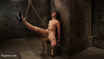 Photo number 14 from 18yr old is bound to the chair<br>Neck rope limits her breathing, this makes her cum hard and often. shot for Hogtied on Kink.com. Featuring Kiki Koi in hardcore BDSM & Fetish porn.