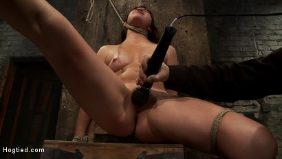 Photo number 10 from 18yr old is bound to the chair<br>Neck rope limits her breathing, this makes her cum hard and often. shot for Hogtied on Kink.com. Featuring Kiki Koi in hardcore BDSM & Fetish porn.