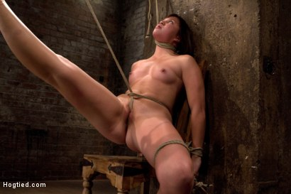 Photo number 1 from 18yr old is bound to the chair<br>Neck rope limits her breathing, this makes her cum hard and often. shot for Hogtied on Kink.com. Featuring Kiki Koi in hardcore BDSM & Fetish porn.