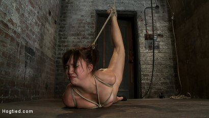 Photo number 14 from 18yr old suffers her first hardcore bondage.<br>Made to cum over and over, left to beg and suffer! shot for Hogtied on Kink.com. Featuring Kiki Koi in hardcore BDSM & Fetish porn.