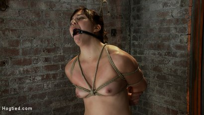 Photo number 4 from 18yr old suffers her first hardcore bondage.<br>Made to cum over and over, left to beg and suffer! shot for Hogtied on Kink.com. Featuring Kiki Koi in hardcore BDSM & Fetish porn.