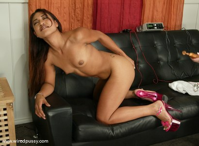 Photo number 8 from Lyla Lei shot for Wired Pussy on Kink.com. Featuring Lyla Lei in hardcore BDSM & Fetish porn.