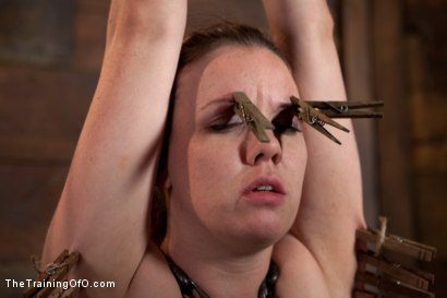 Photo number 11 from Day 5 kitten and taters<br>Heavy Impact and Incredible Orgasms shot for The Training Of O on Kink.com. Featuring Lilla Katt, Nicki Blue and Sophie Monroe in hardcore BDSM & Fetish porn.