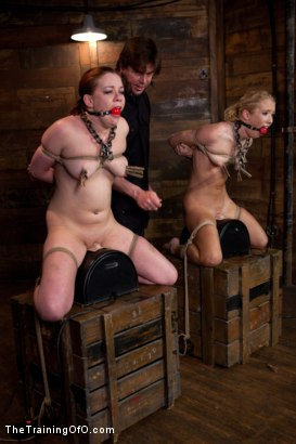 Photo number 7 from Day 5 kitten and taters<br>Heavy Impact and Incredible Orgasms shot for The Training Of O on Kink.com. Featuring Lilla Katt, Nicki Blue and Sophie Monroe in hardcore BDSM & Fetish porn.