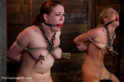 Photo number 8 from Day 5 kitten and taters<br>Heavy Impact and Incredible Orgasms shot for The Training Of O on Kink.com. Featuring Lilla Katt, Nicki Blue and Sophie Monroe in hardcore BDSM & Fetish porn.