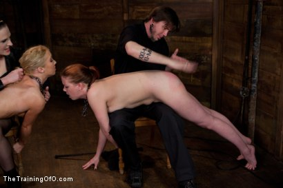 Photo number 14 from Day 5 kitten and taters<br>Heavy Impact and Incredible Orgasms shot for The Training Of O on Kink.com. Featuring Lilla Katt, Nicki Blue and Sophie Monroe in hardcore BDSM & Fetish porn.