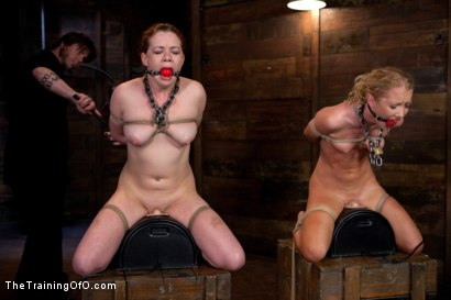 Photo number 6 from Day 5 kitten and taters<br>Heavy Impact and Incredible Orgasms shot for The Training Of O on Kink.com. Featuring Lilla Katt, Nicki Blue and Sophie Monroe in hardcore BDSM & Fetish porn.