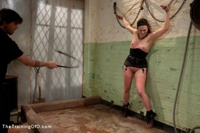 Photo number 15 from Sophie Monroe aka dolly meats<br>Day 1-Buried Alive, Humiliated, and Tormented shot for The Training Of O on Kink.com. Featuring Sophie Monroe in hardcore BDSM & Fetish porn.