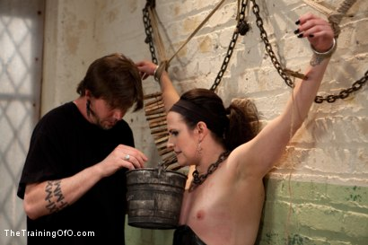 Photo number 12 from Sophie Monroe aka dolly meats<br>Day 1-Buried Alive, Humiliated, and Tormented shot for The Training Of O on Kink.com. Featuring Sophie Monroe in hardcore BDSM & Fetish porn.