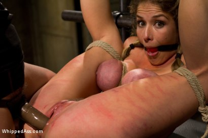 Photo number 5 from A Few Of Felony's Favorite Things shot for Whipped Ass on Kink.com. Featuring Bobbi Starr and Felony in hardcore BDSM & Fetish porn.
