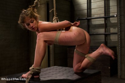 Photo number 14 from A Few Of Felony's Favorite Things shot for Whipped Ass on Kink.com. Featuring Bobbi Starr and Felony in hardcore BDSM & Fetish porn.