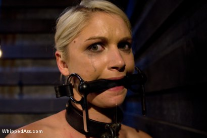 Photo number 4 from Natasha Lyn shot for Whipped Ass on Kink.com. Featuring Felony and Natasha Lyn in hardcore BDSM & Fetish porn.
