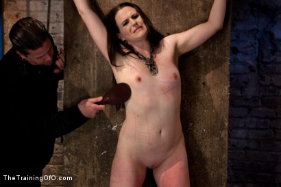 Photo number 15 from Day 3 - dolly meats   Princess Donna and Maitresse Madeline Take Their Turn shot for The Training Of O on Kink.com. Featuring Sophie Monroe, Princess Donna Dolore and Maitresse Madeline Marlowe in hardcore BDSM & Fetish porn.