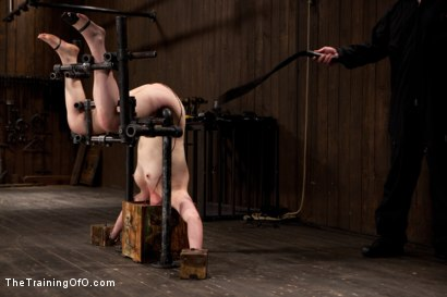 Photo number 5 from Sophie Monroe Day 4<br>Endurance and Predicament Testing With Some Help From Orlando shot for The Training Of O on Kink.com. Featuring Sophie Monroe in hardcore BDSM & Fetish porn.