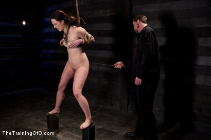 Photo number 6 from Sophie Monroe Day 4   Endurance and Predicament Testing With Some Help From Orlando shot for The Training Of O on Kink.com. Featuring Sophie Monroe in hardcore BDSM & Fetish porn.