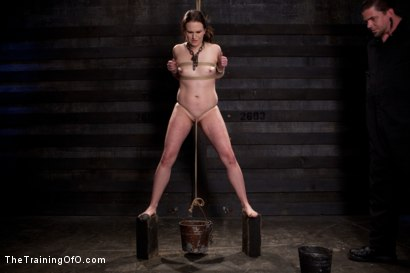 Photo number 8 from Sophie Monroe Day 4   Endurance and Predicament Testing With Some Help From Orlando shot for The Training Of O on Kink.com. Featuring Sophie Monroe in hardcore BDSM & Fetish porn.