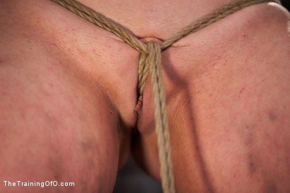 Photo number 9 from Sophie Monroe Day 4   Endurance and Predicament Testing With Some Help From Orlando shot for The Training Of O on Kink.com. Featuring Sophie Monroe in hardcore BDSM & Fetish porn.