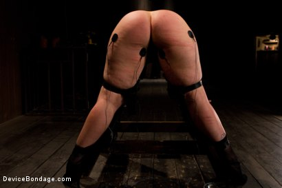 Photo number 7 from Booty is rotund - an ass to take and break shot for Device Bondage on Kink.com. Featuring Tina Horn in hardcore BDSM & Fetish porn.
