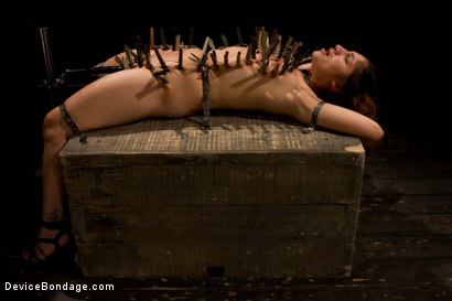 Photo number 2 from First Timer Fuck for All shot for Device Bondage on Kink.com. Featuring Diamond Dahlia and Erin Heart in hardcore BDSM & Fetish porn.