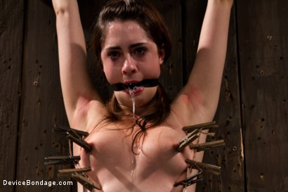 Photo number 1 from The Harder the Bondage the Harder they Cum: Innocent Brunette Demolished shot for Device Bondage on Kink.com. Featuring Lori Adorable in hardcore BDSM & Fetish porn.