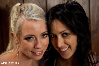Photo number 15 from A Night of Distraction shot for Wired Pussy on Kink.com. Featuring Lorelei Lee and Breanne Benson in hardcore BDSM & Fetish porn.