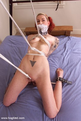 Photo number 1 from Seven shot for Hogtied on Kink.com. Featuring Seven in hardcore BDSM & Fetish porn.