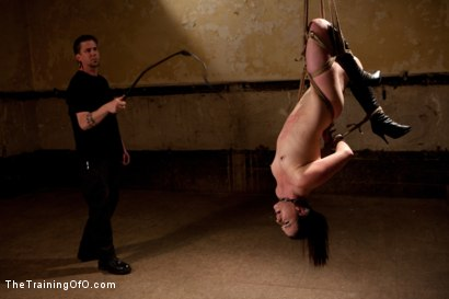 Photo number 7 from dolly meats Day 2<br>Interrogation, OTK, & an Intense Suspension shot for The Training Of O on Kink.com. Featuring Sophie Monroe in hardcore BDSM & Fetish porn.