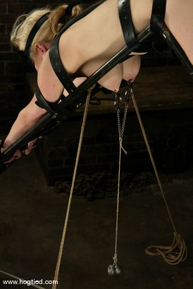 Photo number 7 from Adrianna Nicole and Torque shot for Hogtied on Kink.com. Featuring Adrianna Nicole and Torque in hardcore BDSM & Fetish porn.