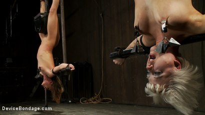 Photo number 10 from Double Inverted Sybian Suspension shot for Device Bondage on Kink.com. Featuring Ariel X and Cherry Torn in hardcore BDSM & Fetish porn.