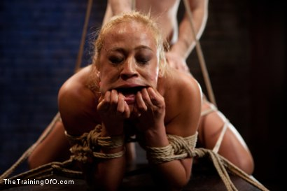 Photo number 10 from Mia Lelani<br>Exotic Porn Slut is Tortured and Fucked shot for The Training Of O on Kink.com. Featuring Mia Lelani and Maestro in hardcore BDSM & Fetish porn.