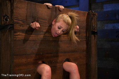 Photo number 14 from Mia Lelani<br>Exotic Porn Slut is Tortured and Fucked shot for The Training Of O on Kink.com. Featuring Mia Lelani and Maestro in hardcore BDSM & Fetish porn.