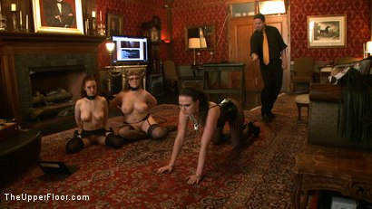 Photo number 8 from Service Day shot for The Upper Floor on Kink.com. Featuring Nerine Mechanique, Iona Grace, Sophie Monroe and Maestro Stefanos in hardcore BDSM & Fetish porn.