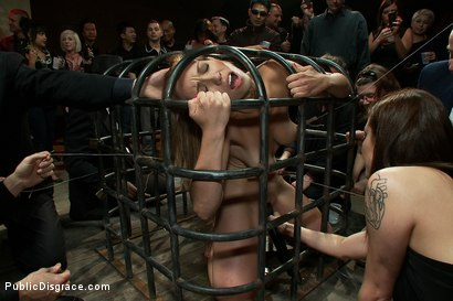 Photo number 4 from Hot Local Amateur Locked in a Cage and Fed to a Hungry Crowd  shot for Public Disgrace on Kink.com. Featuring Mark Davis, Audrey Rose and Princess Donna Dolore in hardcore BDSM & Fetish porn.