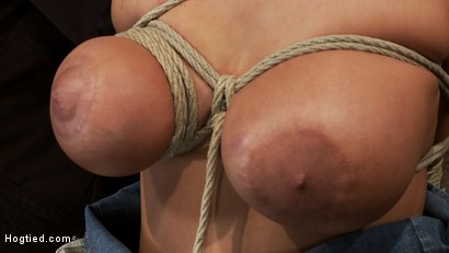 Photo number 6 from How to manhandle a slut 101:<br>Big tits, sexy face, no gag reflex. This is how you fuck up a bitch. shot for Hogtied on Kink.com. Featuring Trina Michaels in hardcore BDSM & Fetish porn.