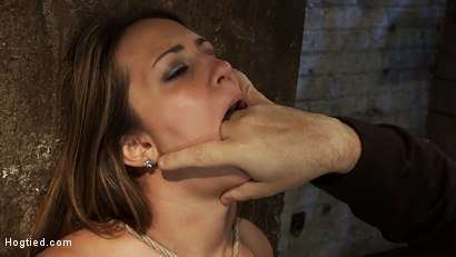 Photo number 8 from How to manhandle a slut 101:<br>Big tits, sexy face, no gag reflex. This is how you fuck up a bitch. shot for Hogtied on Kink.com. Featuring Trina Michaels in hardcore BDSM & Fetish porn.