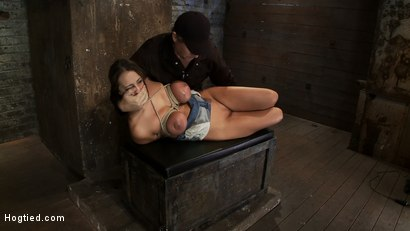 Photo number 9 from How to manhandle a slut 101:<br>Big tits, sexy face, no gag reflex. This is how you fuck up a bitch. shot for Hogtied on Kink.com. Featuring Trina Michaels in hardcore BDSM & Fetish porn.