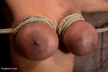 Photo number 3 from Trina gets her huge tits bound<br>Her neck stretched her face hole fucked & orgasms like a whore. shot for Hogtied on Kink.com. Featuring Trina Michaels in hardcore BDSM & Fetish porn.