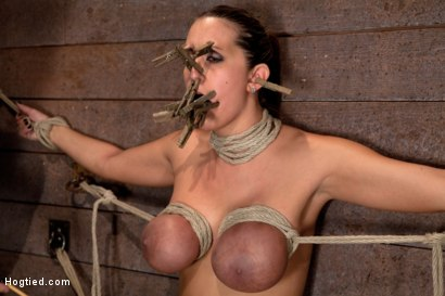 Photo number 6 from Trina gets her huge tits bound<br>Her neck stretched her face hole fucked & orgasms like a whore. shot for Hogtied on Kink.com. Featuring Trina Michaels in hardcore BDSM & Fetish porn.