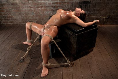 Photo number 11 from Sexy tan oiled blond, is slowly dragged into the darkness by a neck rope<br>Made to cum over & over. shot for Hogtied on Kink.com. Featuring Trina Michaels in hardcore BDSM & Fetish porn.