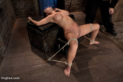 Photo number 5 from Sexy tan oiled blond, is slowly dragged into the darkness by a neck rope<br>Made to cum over & over. shot for Hogtied on Kink.com. Featuring Trina Michaels in hardcore BDSM & Fetish porn.