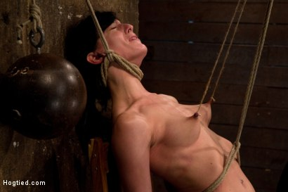 Photo number 10 from Brutal nipple pulling, slow strangulation, extreme back arching   Made to cum so hard, so often. shot for Hogtied on Kink.com. Featuring Elise Graves in hardcore BDSM & Fetish porn.
