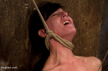 Photo number 12 from Brutal nipple pulling, slow strangulation, extreme back arching<br>Made to cum so hard, so often. shot for Hogtied on Kink.com. Featuring Elise Graves in hardcore BDSM & Fetish porn.