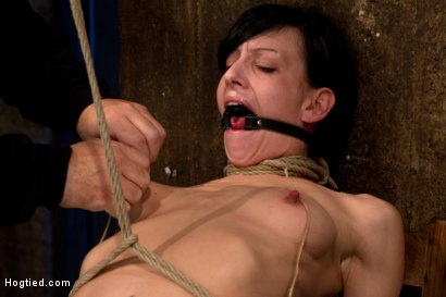 Photo number 7 from Brutal nipple pulling, slow strangulation, extreme back arching   Made to cum so hard, so often. shot for Hogtied on Kink.com. Featuring Elise Graves in hardcore BDSM & Fetish porn.