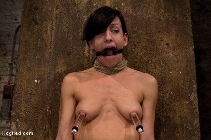 Photo number 8 from Brutal nipple pulling, slow strangulation, extreme back arching<br>Made to cum so hard, so often. shot for Hogtied on Kink.com. Featuring Elise Graves in hardcore BDSM & Fetish porn.