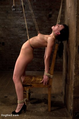 Photo number 1 from Brutal nipple pulling, slow strangulation, extreme back arching<br>Made to cum so hard, so often. shot for Hogtied on Kink.com. Featuring Elise Graves in hardcore BDSM & Fetish porn.