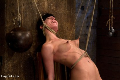 Photo number 13 from Brutal nipple pulling, slow strangulation, extreme back arching<br>Made to cum so hard, so often. shot for Hogtied on Kink.com. Featuring Elise Graves in hardcore BDSM & Fetish porn.
